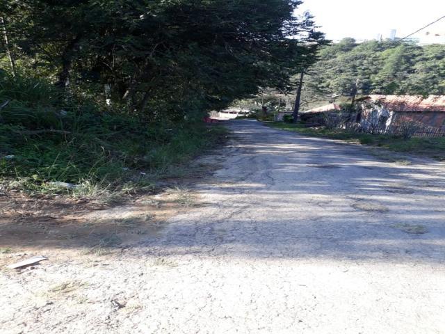 #449TLC - Terreno para Venda em Telêmaco Borba - PR - 2
